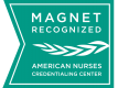 Magnet Recognition Program